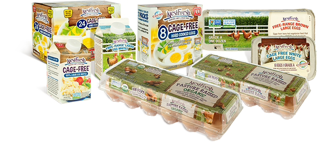 Group photograph of NestFresh cage free, pasture raised and USDA organic eggs in egg states including hard cooked, liquid and shelled eggs.