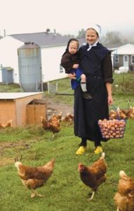 Omish farmer holds a toddler with one arm and a basket full of brown, cage free eggs with her opposite hand as she smiles at her free-range, cage free hens.